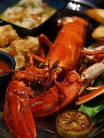 上海ifc?#22363;?星级佳肴享宴 奢华美馔荟萃